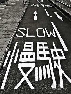 Photograph - Go Slow by Ethna Gillespie