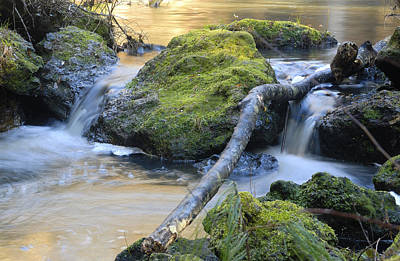 Photograph - Go With The Flow by Charles Beeler