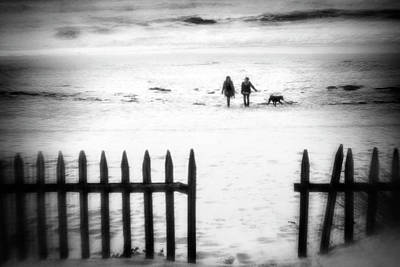 Dog Walking Photograph - Go With The Flow by Paulo Abrantes