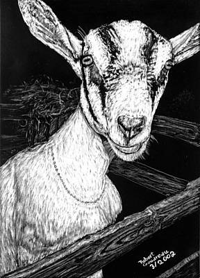 Drawing - Goat At Country Fair by Robert Goudreau