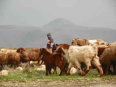 Goat Herder In Jordan Valley Art Print by Noreen HaCohen