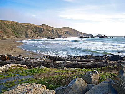 Goat Rock State Beach On The Pacific Ocean Near Outlet Of Russian River-ca  Art Print