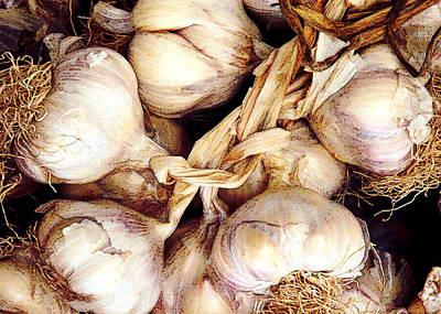 Cloves Painting - Gobs Og Garlic by Elaine Plesser