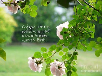 Photograph - God Gave Us Memory by Avis  Noelle