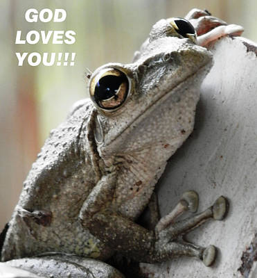 Photograph - God Loves You Frog by Belinda Lee