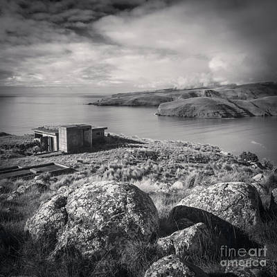 Photograph - Godley Head Christchurch by Colin and Linda McKie