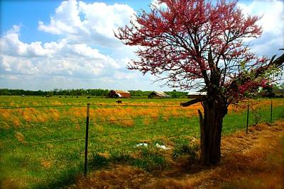 Photograph - Gods Country   Commerce Miami Oklahoma by Iconic Images Art Gallery David Pucciarelli