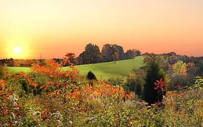 Sumac Flower Photograph - God's Glory by Randall Branham