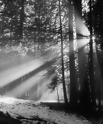 Photograph - God's Light by David Simmer