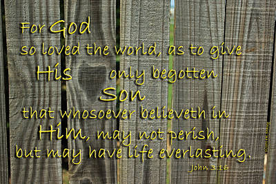 Photograph - God's Love John 316 by Robyn Stacey