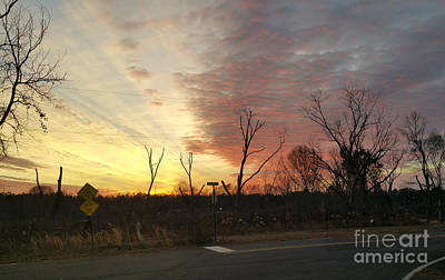 Photograph - God's Painted Sky by Donna Brown