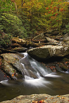 Ocoee Photograph - Goforth In The Fall by Gregory Cook