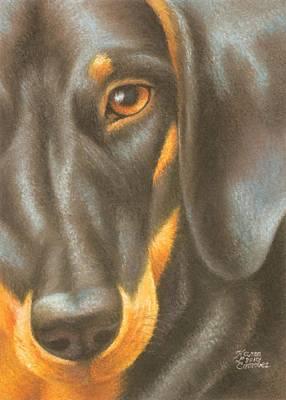 Goggie Daschund Art Print by Karen Coombes
