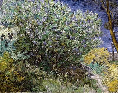 Gogh, Vincent Van 1853-1890. Lilac Art Print by Everett