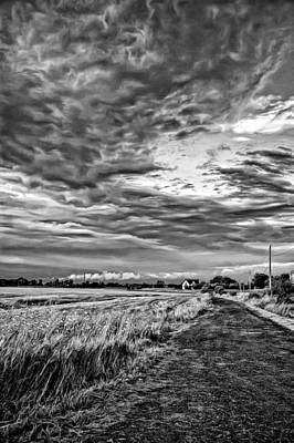 Weed Photograph - Goin' Home - Paint Bw by Steve Harrington