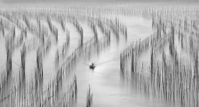 Bamboo Wall Art - Photograph - Going Back by Angela Muliani Hartojo