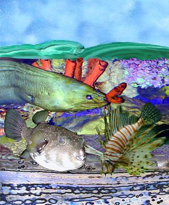 Blow Fish Digital Art - Going Down by Wayne Ritt