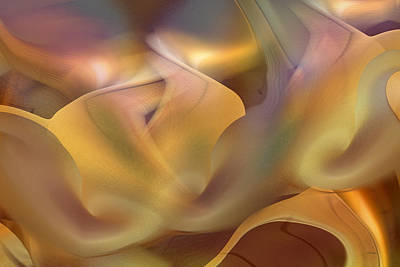 Digital Art - Going Softly by rd Erickson