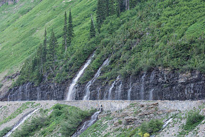 Photograph - Going To The Sun Road Weeping Wall by Michael Gooch
