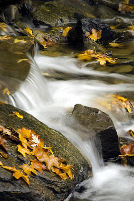 Rollos Photograph - Going With The Flow by Christina Rollo