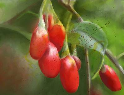 Colleen Taylor Painting - Gojo Berries by Colleen Taylor