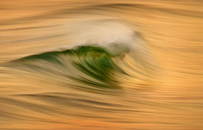 Photograph - Gold And Green C6j4244 by David Orias