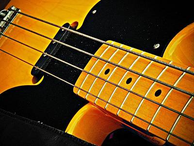 Photograph - Gold Bass And Strings  by Chris Berry