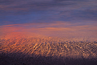 Photograph - Gold Bluffs Beach Sunset by Susan Rovira