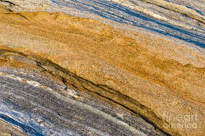 Photograph - Gold Glitter by Tamara Becker
