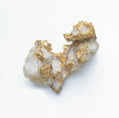 Gold In Quartz Groundmass Art Print by Dorling Kindersley/uig