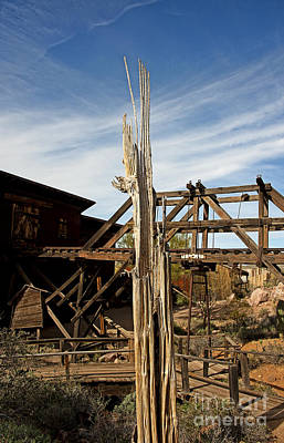 Photograph - Gold Mine Sentinel Long Standing by Lee Craig