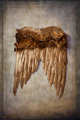 Gold Wings Art Print by Garry Gay