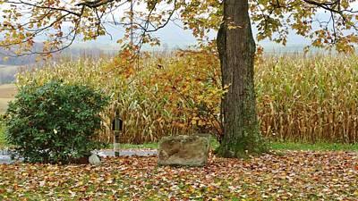 Cornfield Mixed Media - Golden Autumn by Sherry Brant