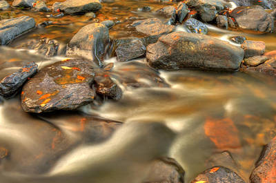 Photograph - Golden Autumn Stream by Gregory Ballos