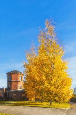 Vivid Fall Colors Photograph - Golden Autumn by Veikko Suikkanen