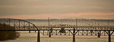 Seagull Mixed Media - Golden Bridge by Trish Tritz