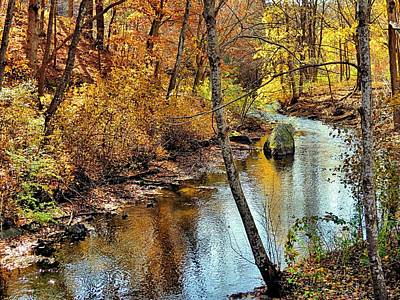 Photograph - Golden Brook by Janice Drew