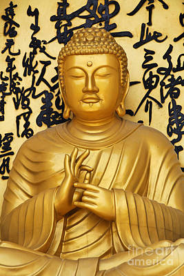 World Peace Photograph - Golden Buddha Statue At The World Peace Pagoda Pokhara by Robert Preston