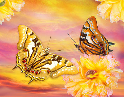 Alixandra Mullins Photograph - Golden Butterfly by Alixandra Mullins