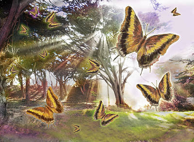 Alixandra Mullins Photograph - Golden Butterfly Rays by Alixandra Mullins