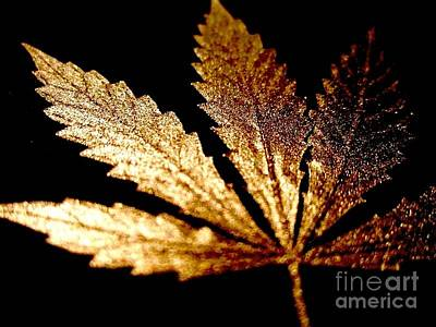 Ganja Mixed Media - Golden Cannabis Leaf by Sean Paradise