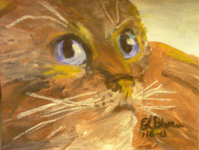 Golden Cat With Blue Eyes Original by Edward Blume