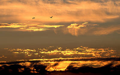 Photograph - Golden Clouds by AJ  Schibig