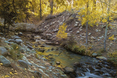 Photograph - Golden Creek by Maria Coulson