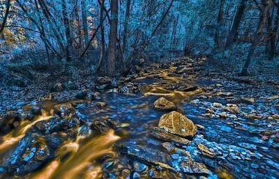 Photograph - Golden Creek by Thomas Born