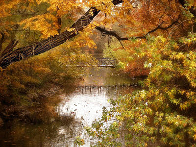 Autumn Landscape Photograph - Golden Days by Jessica Jenney