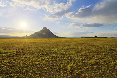 Buttes Photograph - Golden Desert by Chad Dutson