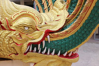 Dragon Photograph - Golden Dragon by Michael Kim