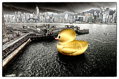 Golden Duck In Victoria Harbor Original by Thierry CHRIN