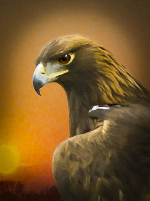 Golden Eagle Sunset Painting Original by F Leblanc